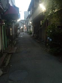 20130712ネコ12.jpg