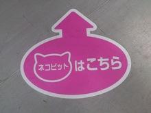 2013083005ネコピット案内シール.jpg