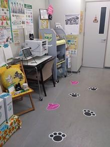 2013083006クロネコの床.jpg