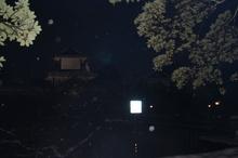 2014021417金沢城2.JPG