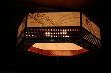 2014022119照明の傘2.JPG