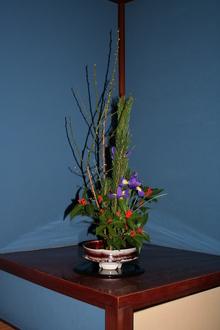 2014022123群青の間の花.JPG