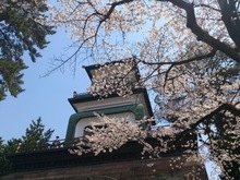 2014041802尾山神社2.jpg