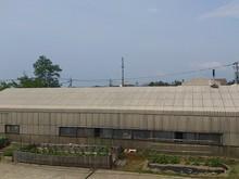 2014061301畑.jpg