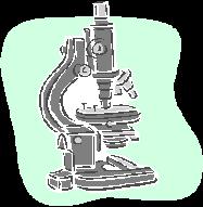 141008顕微鏡.png