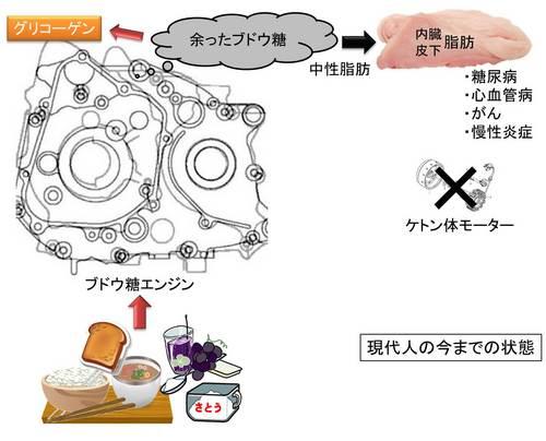 ブドウ糖エンジン2.jpg