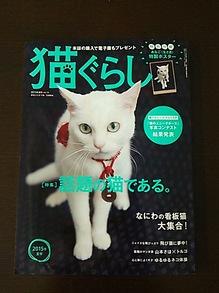2015051501猫ぐらし.JPG