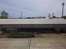 2015052201菜園.JPG
