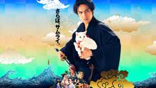2015073102猫侍南の島へ行く.jpg