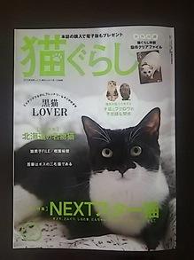 2015082102猫ぐらし表紙.JPG