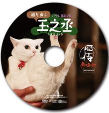 2015091802掘り出し玉之丞DVD.jpg