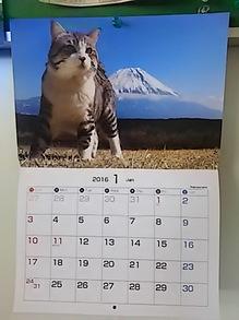 2016011502カレンダー.JPG
