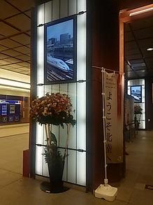 2016031806駅構内の花.JPG