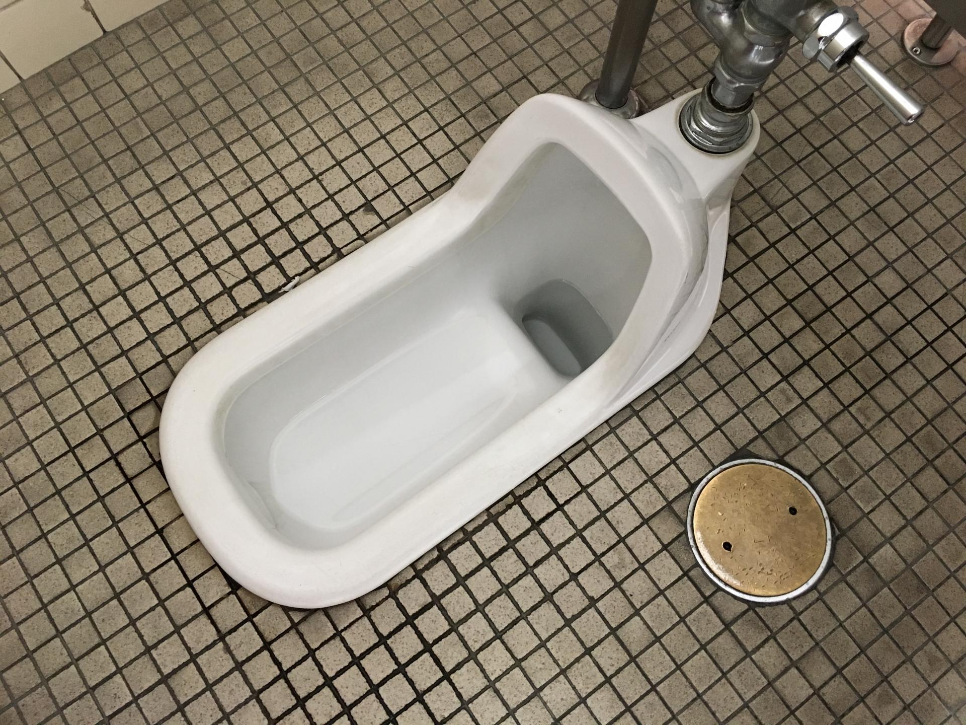 便秘には和式トイレ