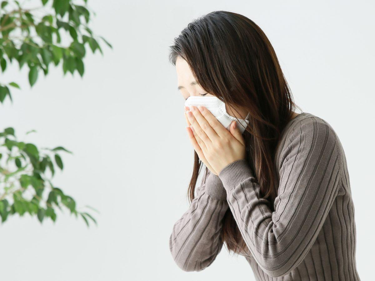 花粉症と腎臓病。両者をとりもつ腸内環境。