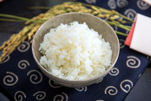 低たんぱくのお米ははたして腎臓病に本当に良いのか?