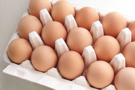 タンパク質をどれくらい食べると腎臓に負担?卵や肉魚乳製品豆類もみんなタンパク質