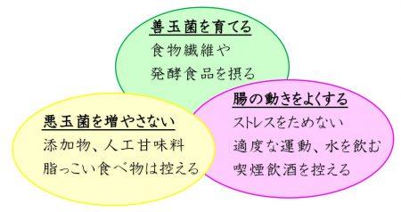 腸内環境を整えるための3要素